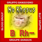B rh- negativo